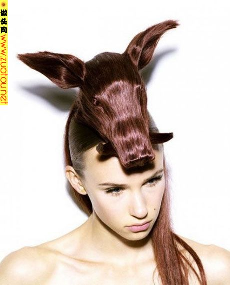 Weird Animal Hairstyles